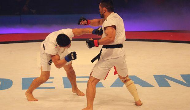 Japan taekwondo