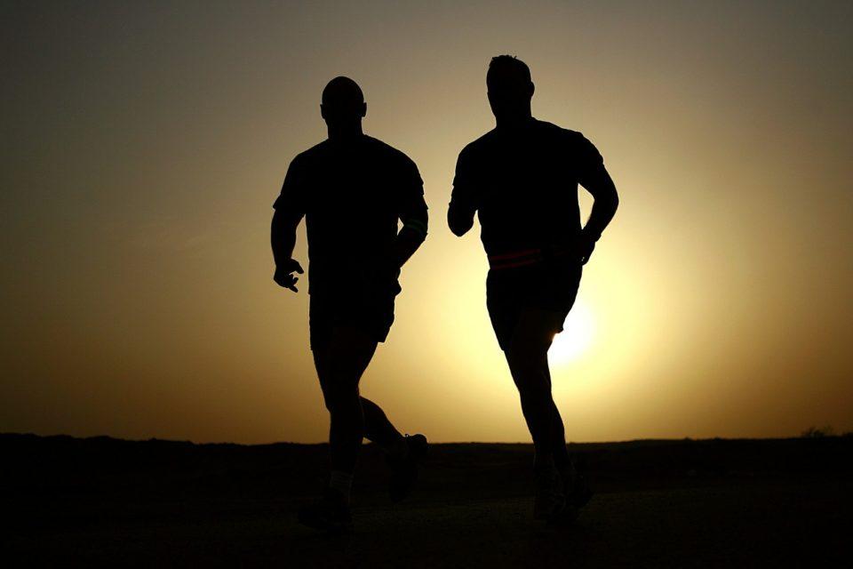 2 chiafrø løbere